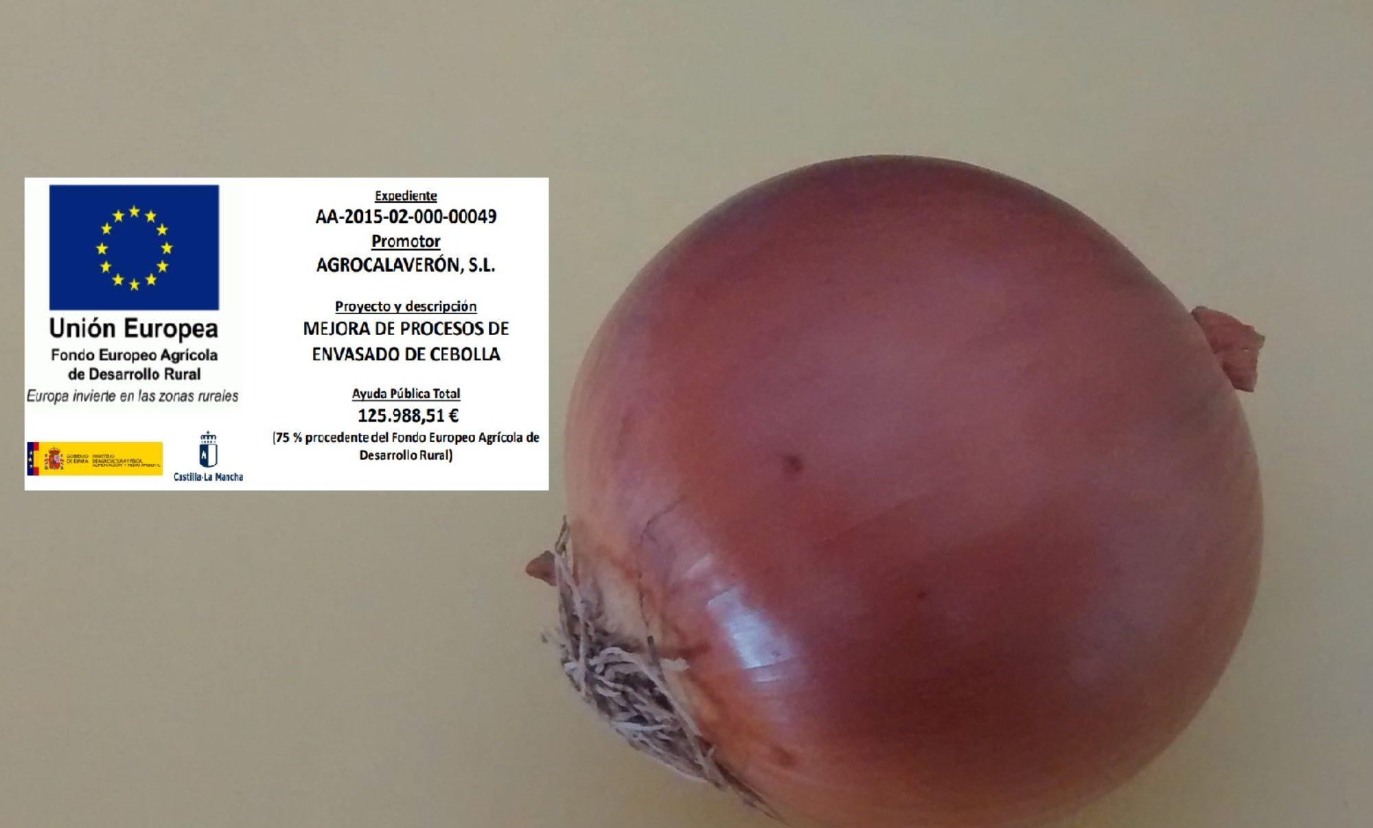 Quality Onions